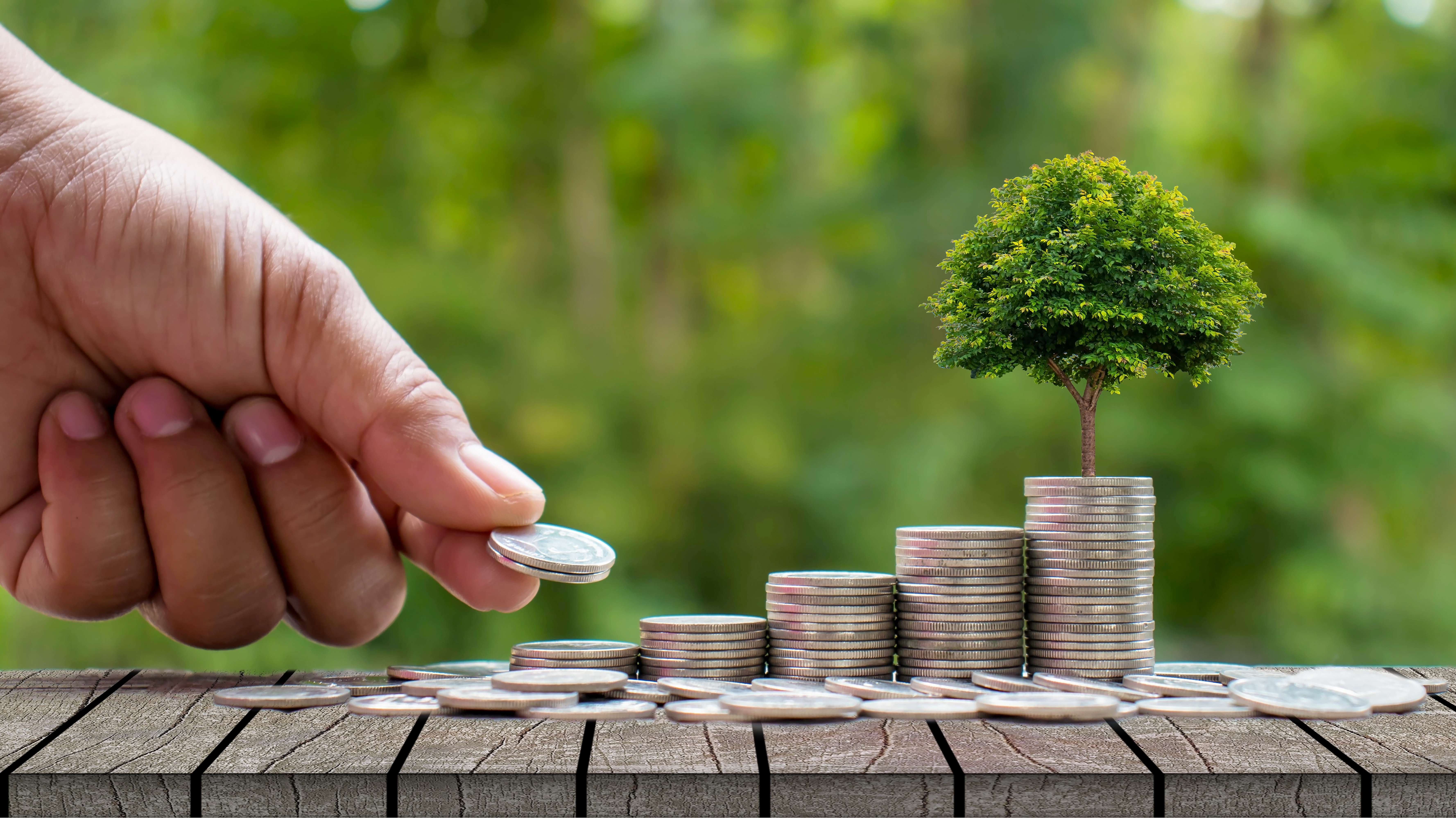 Finance will have a green future!– Part II