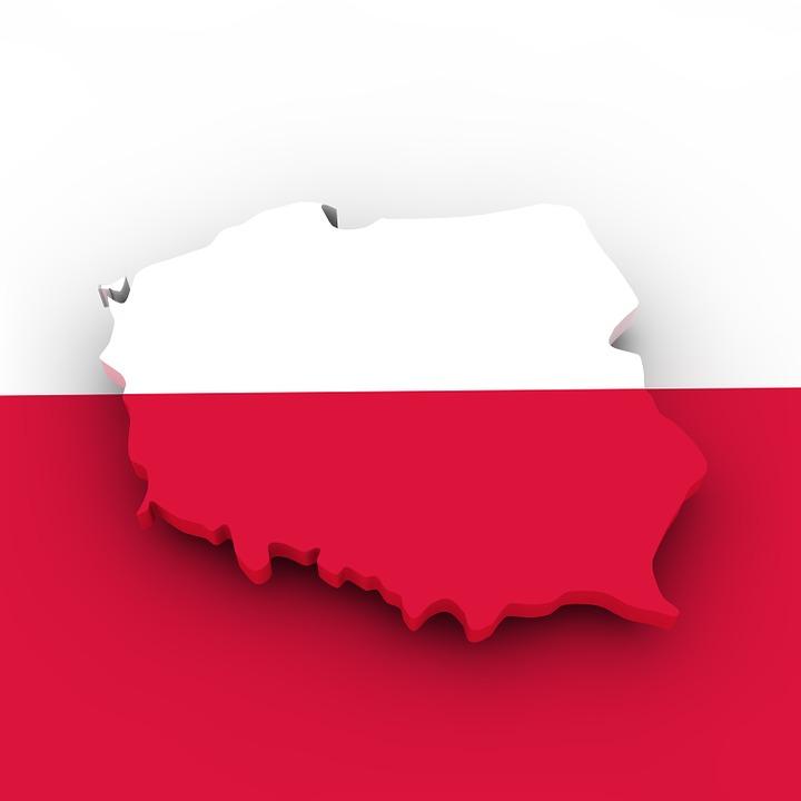 Poland vs pandemic: a look through a Central European lens