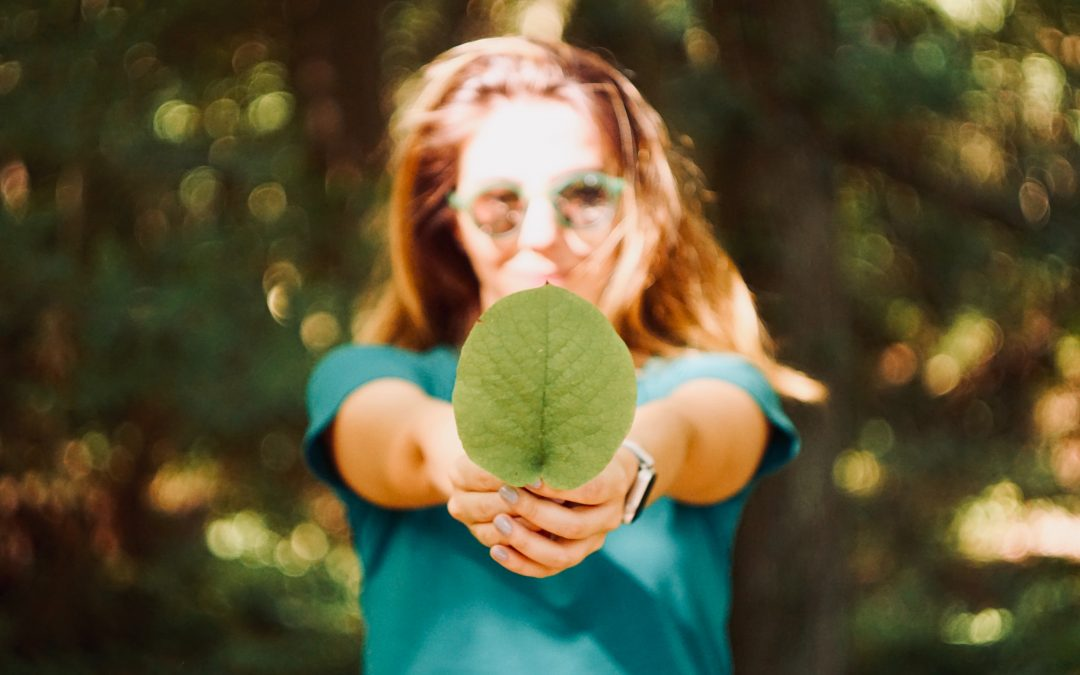 7 ½ points worth knowing about sustainable finance in CEE